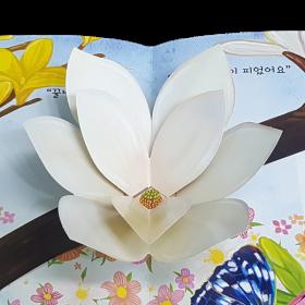 봄동산의 봄꽃
