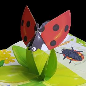 귀여운 무당벌레