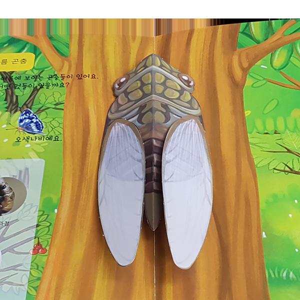 사계절 곤충