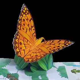 펀북 생태 [곤충 박물관]